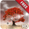 Herbst Live Wallpaper Free HD