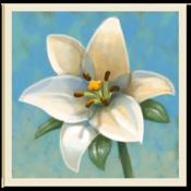 App Icon: Innerer Garten