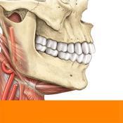 App Icon: Sobotta Anatomie Atlas Gratis 2.9.1