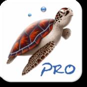 App Icon: Dive Planner Pro