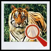 App Icon: Find It 2™ Unterschiede finden