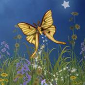 App Icon: Hidden Garden