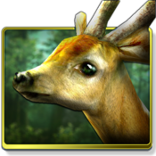 App Icon: Forest HD