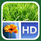App Icon: Dyptic Frames FREE 2.4