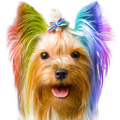 App Icon: Colorize 1.3.0