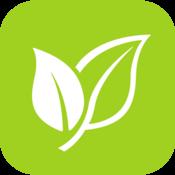 App Icon: Pollen
