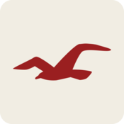 App Icon: Hollister So Cal Style