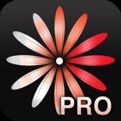 App Icon: WomanLog-Pro-Kalender