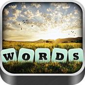 App Icon: Words in a Pic - Deutsch 1.5.0