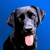 App Icon: Hundegeräusche 7.1.1