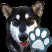 App Icon: Hunde