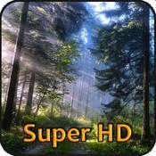 App Icon: Wälder Super HD (für den neuen iPad) - Amazing Wallpapers for iPad 2.1