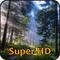 Wälder Super HD (für den neuen iPad) - Amazing Wallpapers for iPad